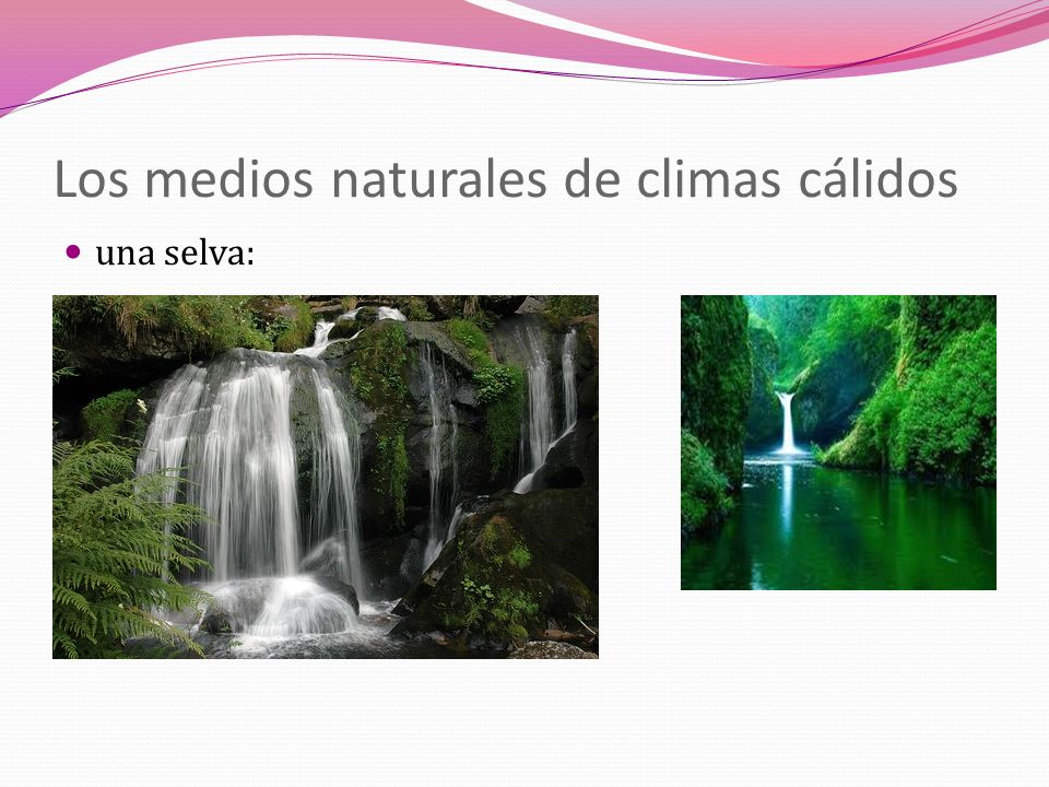 Los medios naturales de climas cálidos