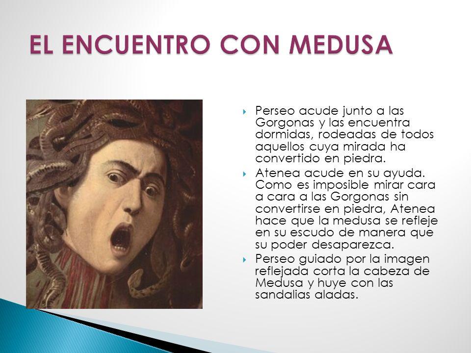 EL ENCUENTRO CON MEDUSA