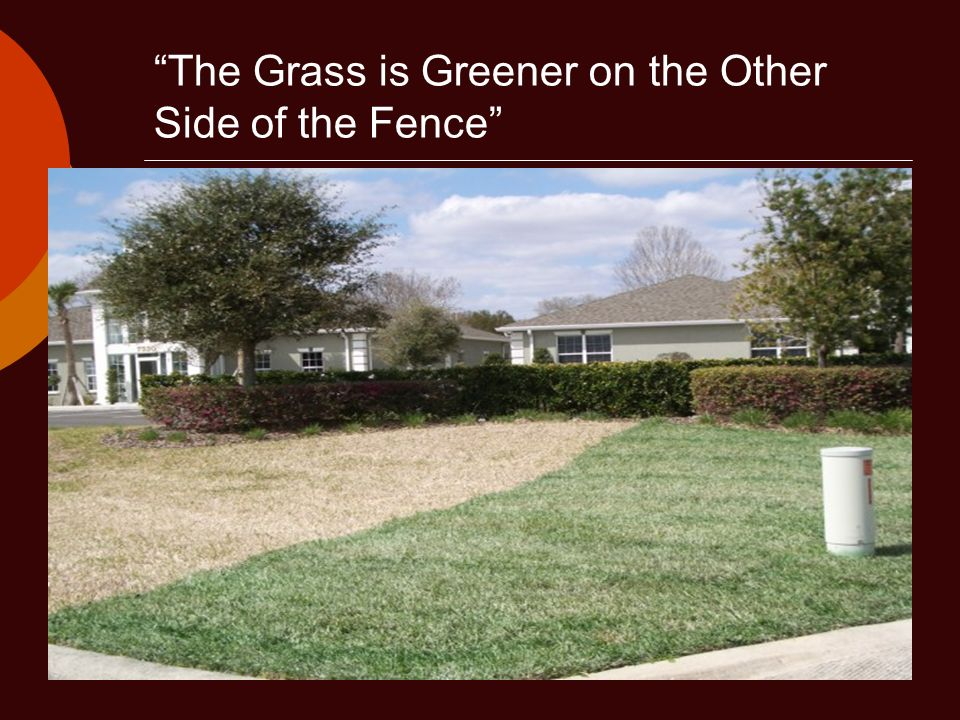 The Grass is Greener on the Other Side of the Fence
