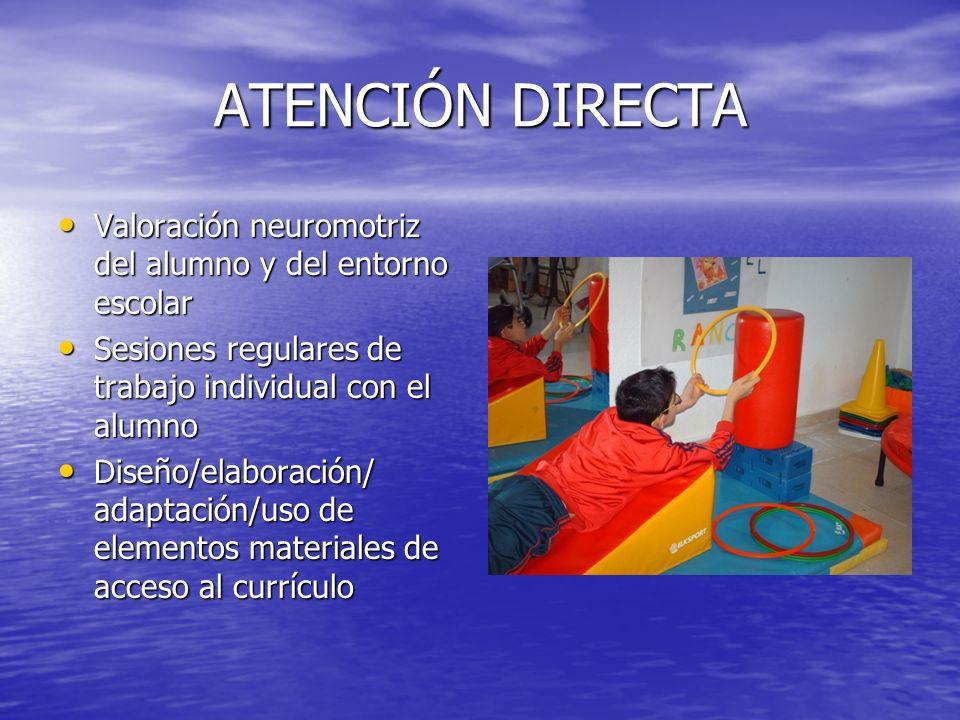 ATENCIÓN DIRECTAValoración neuromotriz del alumno y del entorno escolar. Sesiones regulares de trabajo individual con el alumno.