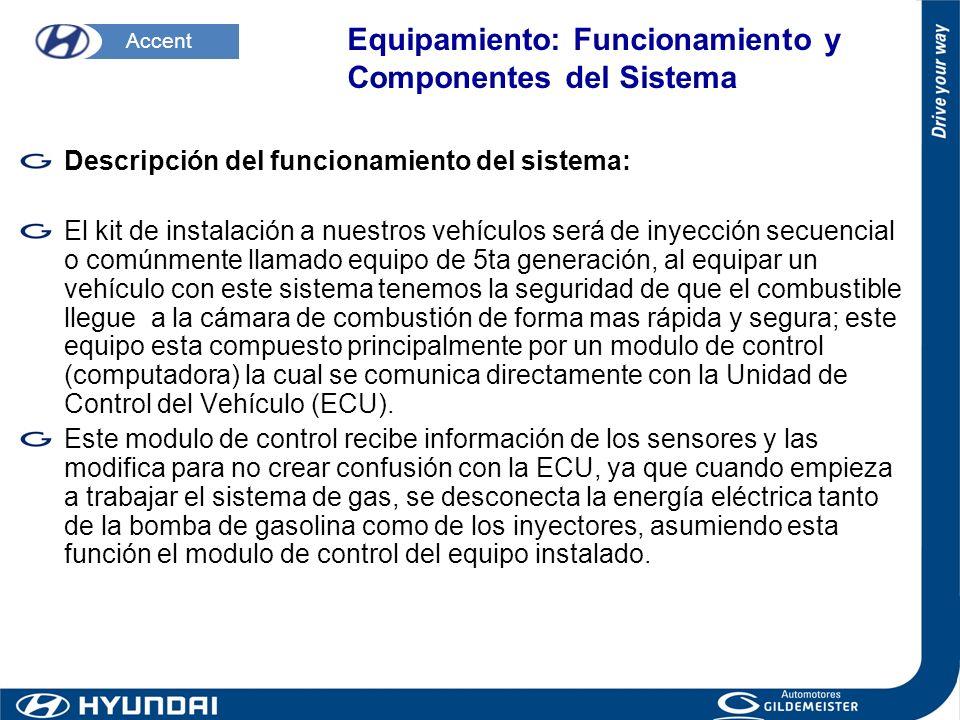 Equipamiento: Funcionamiento y Componentes del Sistema