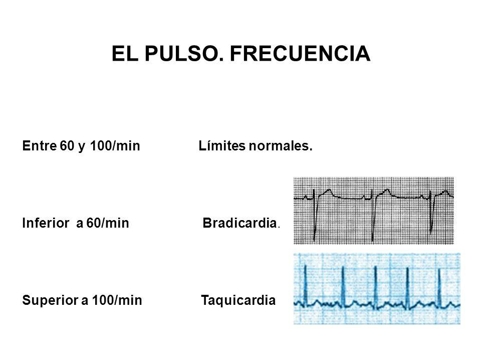 EL PULSO. FRECUENCIA Entre 60 y 100/min Límites normales.