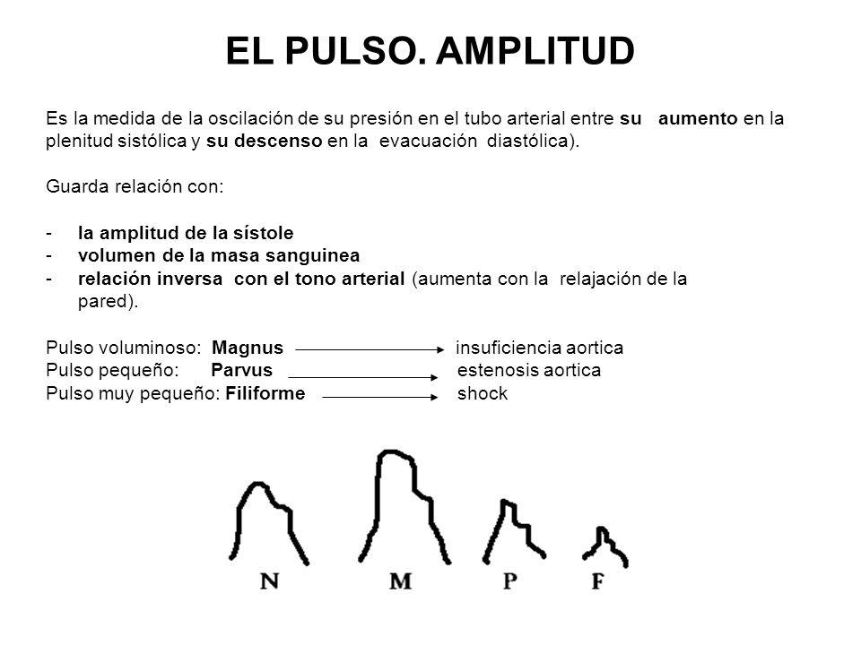 EL PULSO. AMPLITUD Es la medida de la oscilación de su presión en el tubo arterial entre su aumento en la.