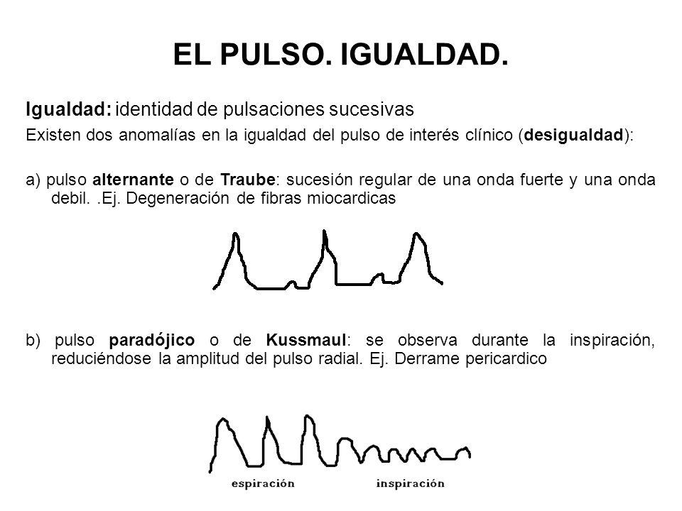EL PULSO. IGUALDAD. Igualdad: identidad de pulsaciones sucesivas