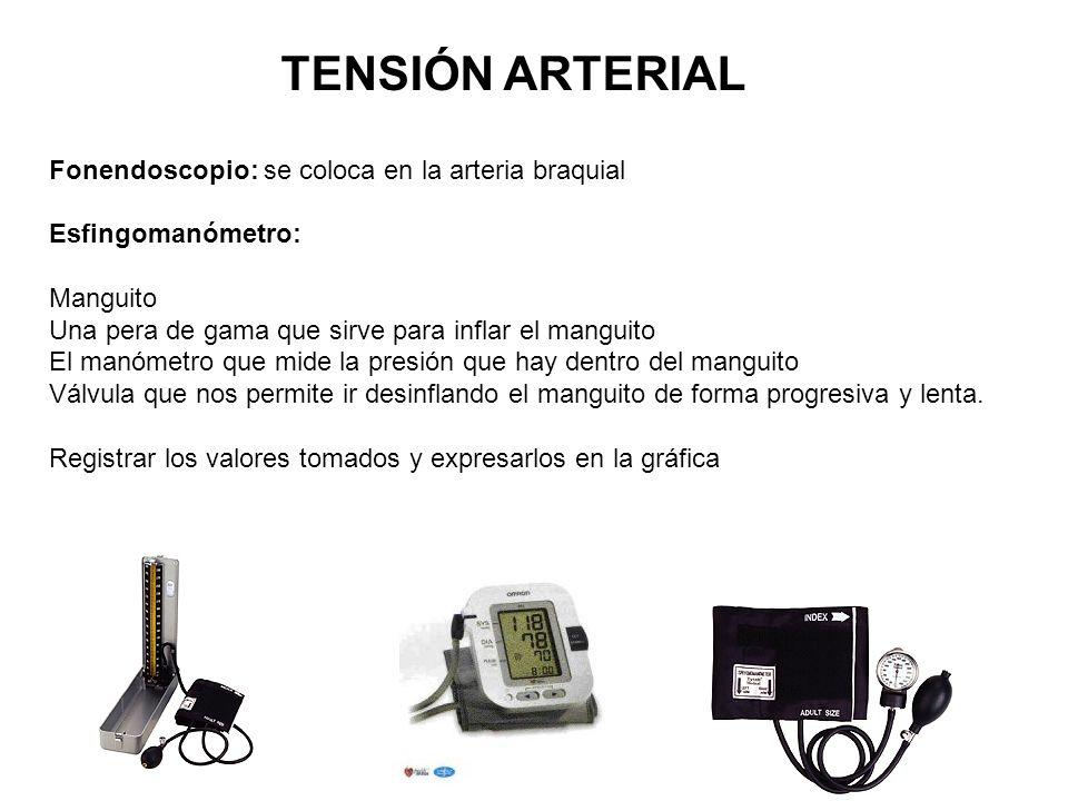 TENSIÓN ARTERIAL Fonendoscopio: se coloca en la arteria braquial