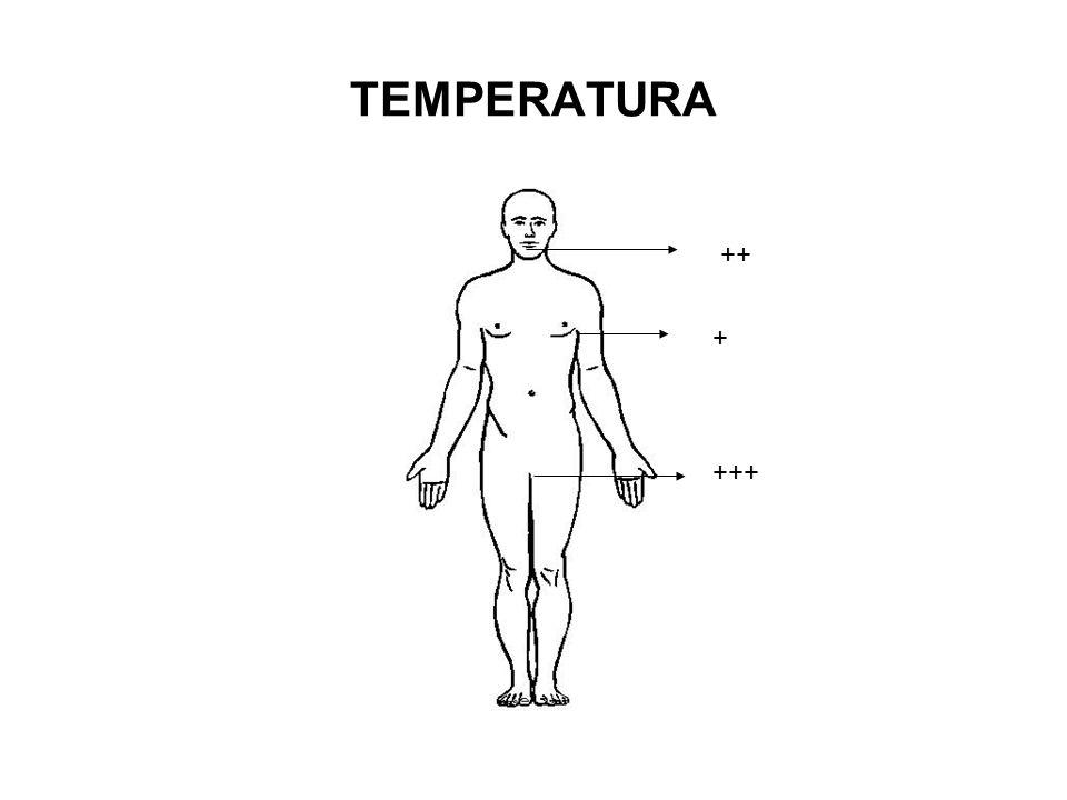 TEMPERATURA ++ + +++