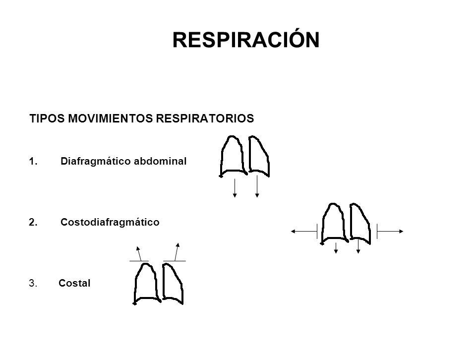 RESPIRACIÓN TIPOS MOVIMIENTOS RESPIRATORIOS Diafragmático abdominal
