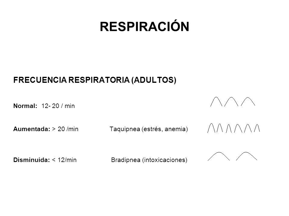RESPIRACIÓN FRECUENCIA RESPIRATORIA (ADULTOS) Normal: 12- 20 / min