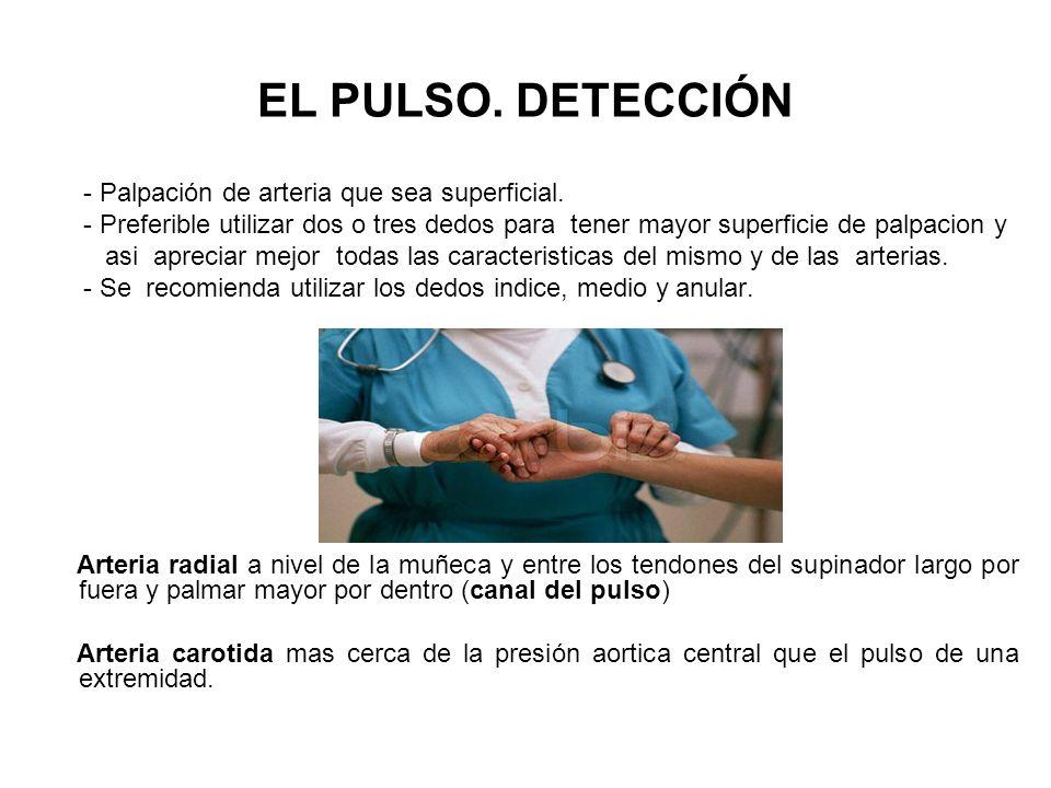 EL PULSO. DETECCIÓN - Palpación de arteria que sea superficial.