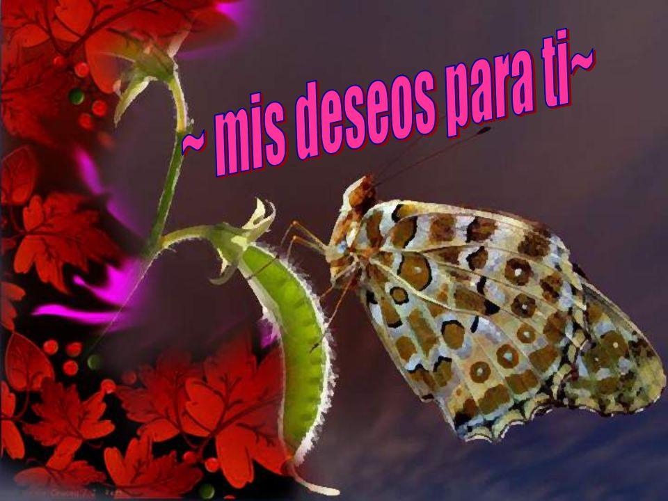 ~ mis deseos para ti~
