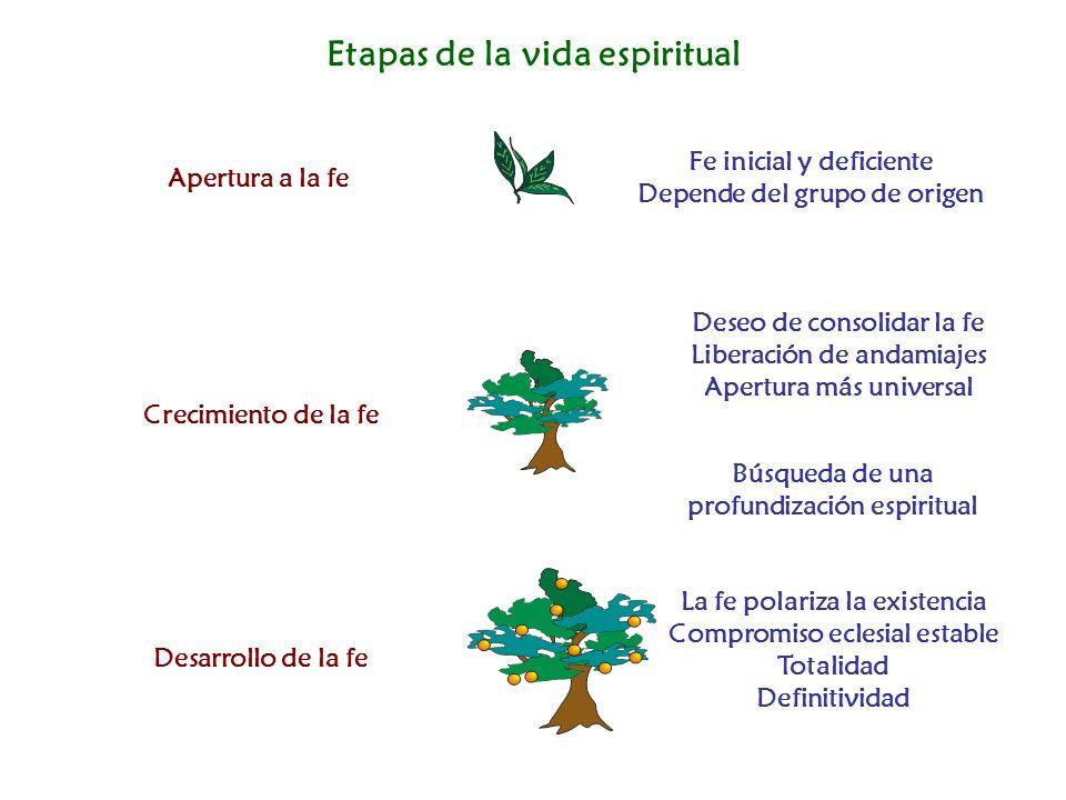 Etapas de la vida espiritual