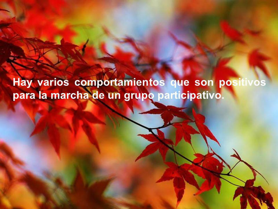 Hay varios comportamientos que son positivos para la marcha de un grupo participativo.