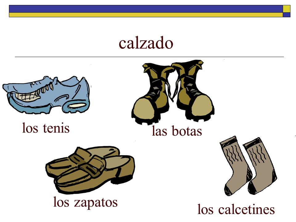 calzado los tenis las botas los zapatos los calcetines