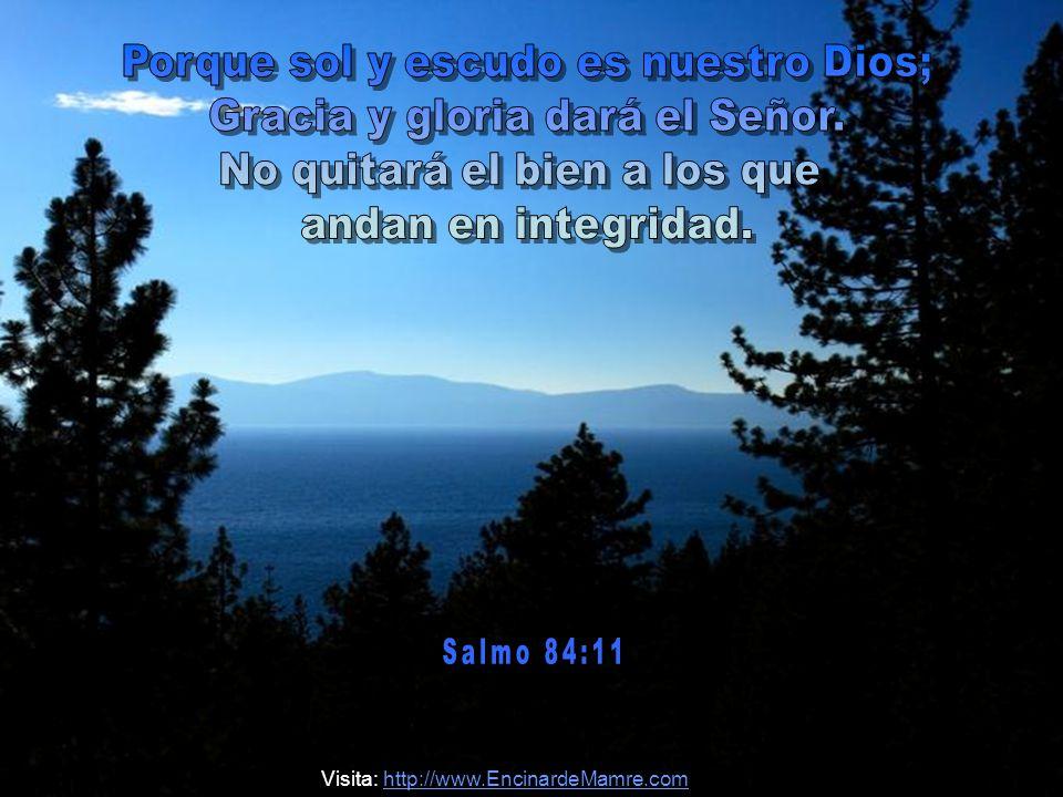 Porque sol y escudo es nuestro Dios; Gracia y gloria dará el Señor.