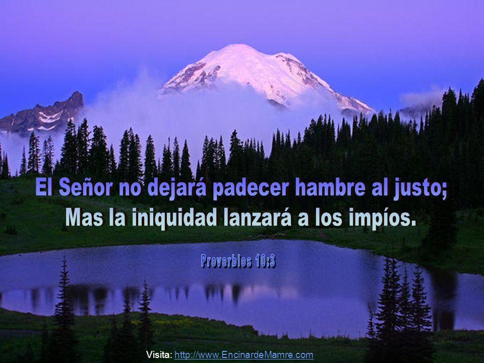 El Señor no dejará padecer hambre al justo;