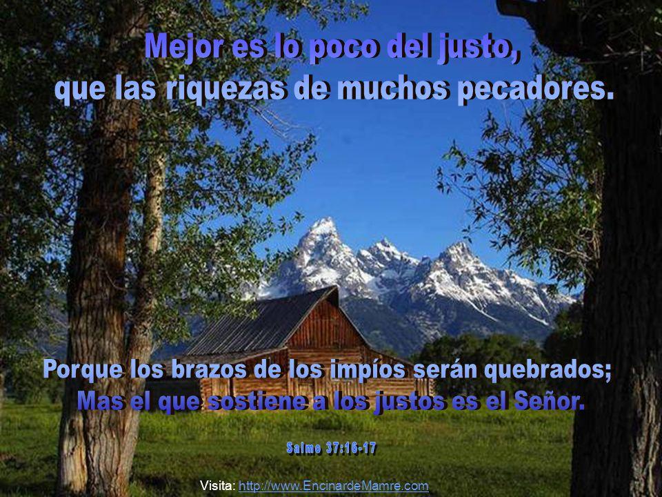 Mejor es lo poco del justo, que las riquezas de muchos pecadores.