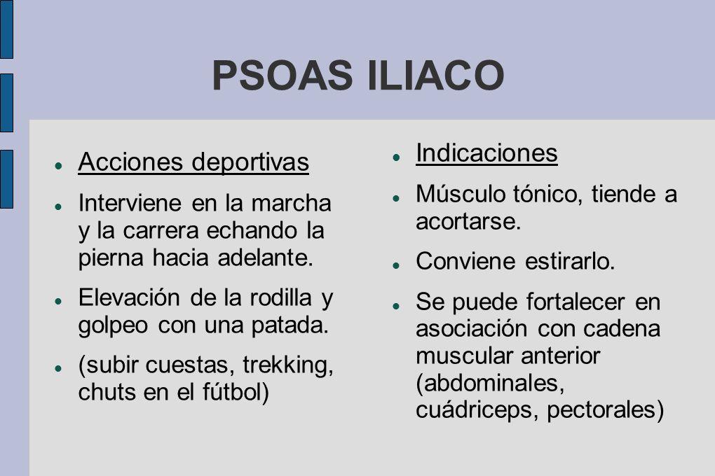 PSOAS ILIACO Indicaciones Acciones deportivas