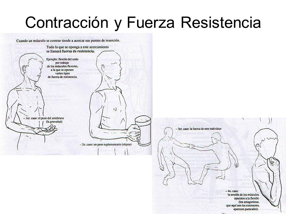 Contracción y Fuerza Resistencia