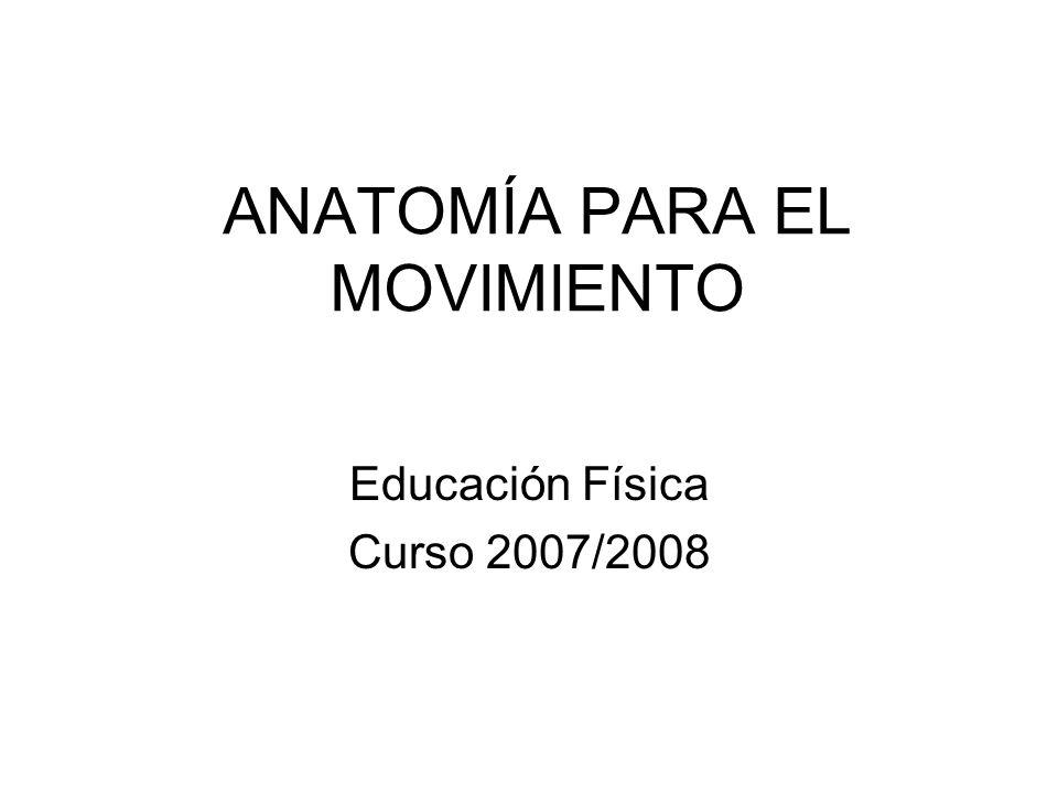 ANATOMÍA PARA EL MOVIMIENTO
