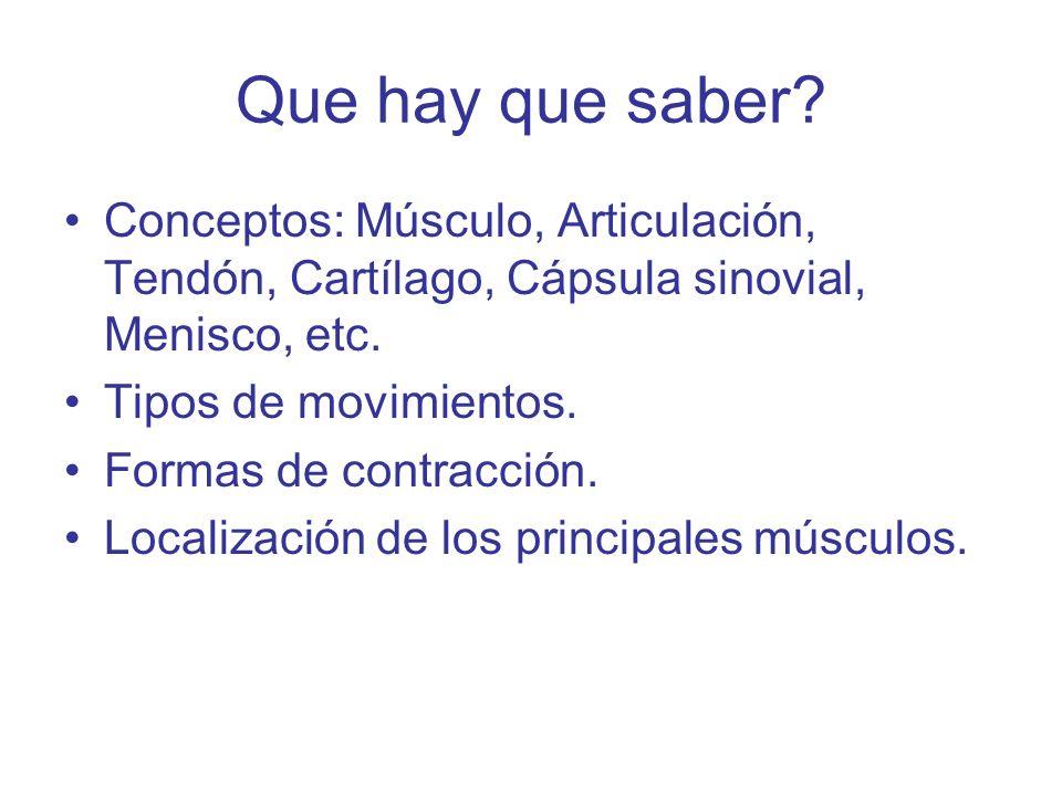 Que hay que saber Conceptos: Músculo, Articulación, Tendón, Cartílago, Cápsula sinovial, Menisco, etc.