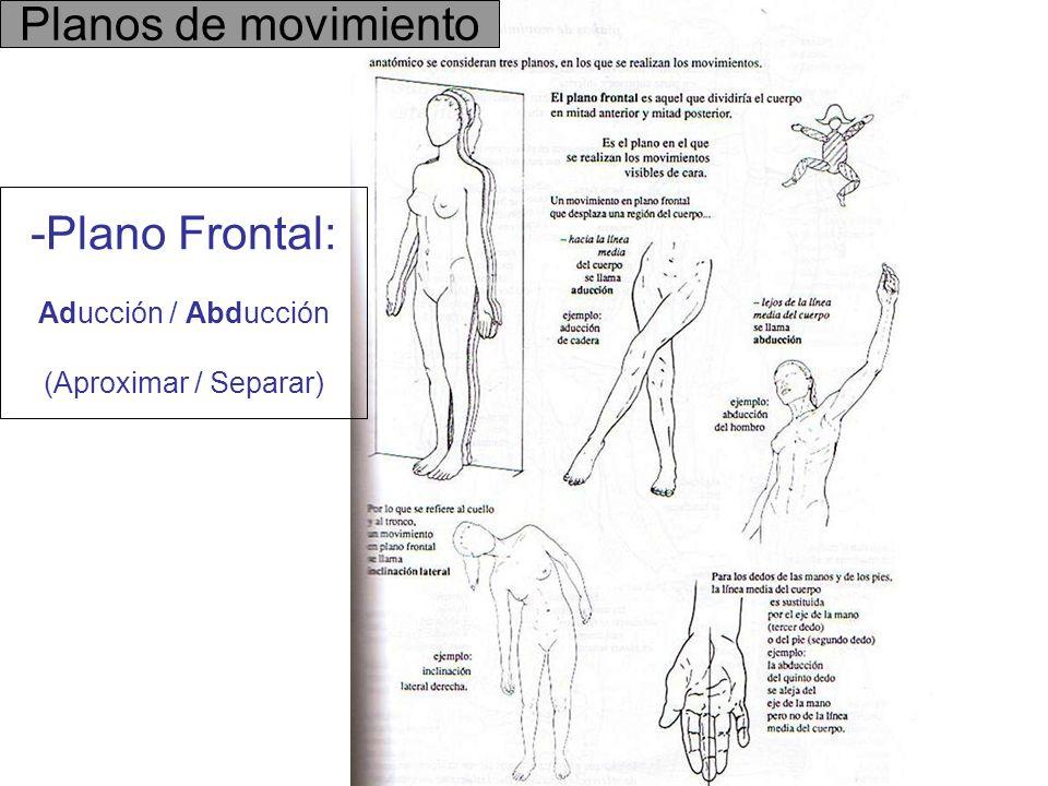 Plano Frontal: Aducción / Abducción (Aproximar / Separar)