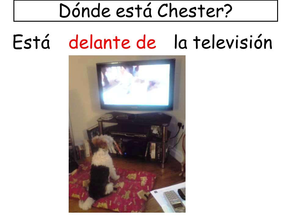 Dónde está Chester Está delante de la televisión