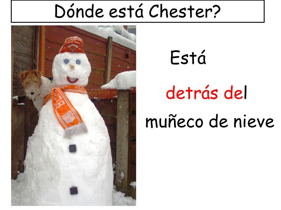 Dónde está Chester Está detrás del muñeco de nieve