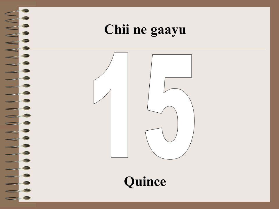 Chii ne gaayu 15 Quince