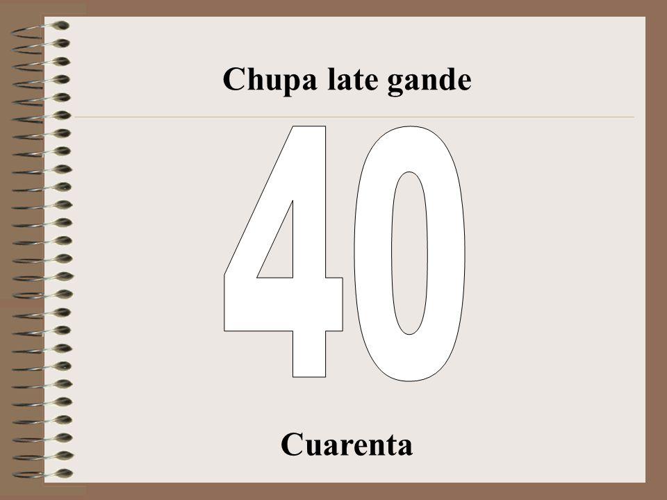 Chupa late gande 40 Cuarenta