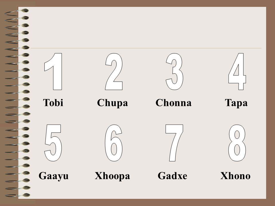 1 Tobi 2 Chupa 3 Chonna 4 Tapa 5 Gaayu 6 Xhoopa 7 Gadxe 8 Xhono