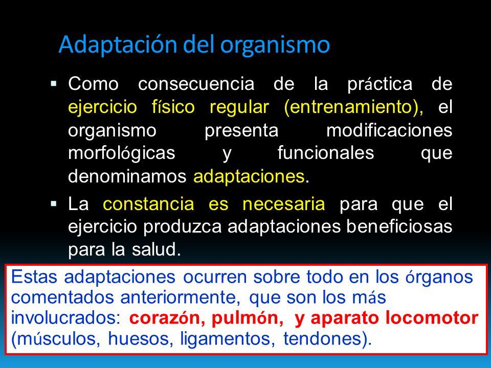Adaptación del organismo