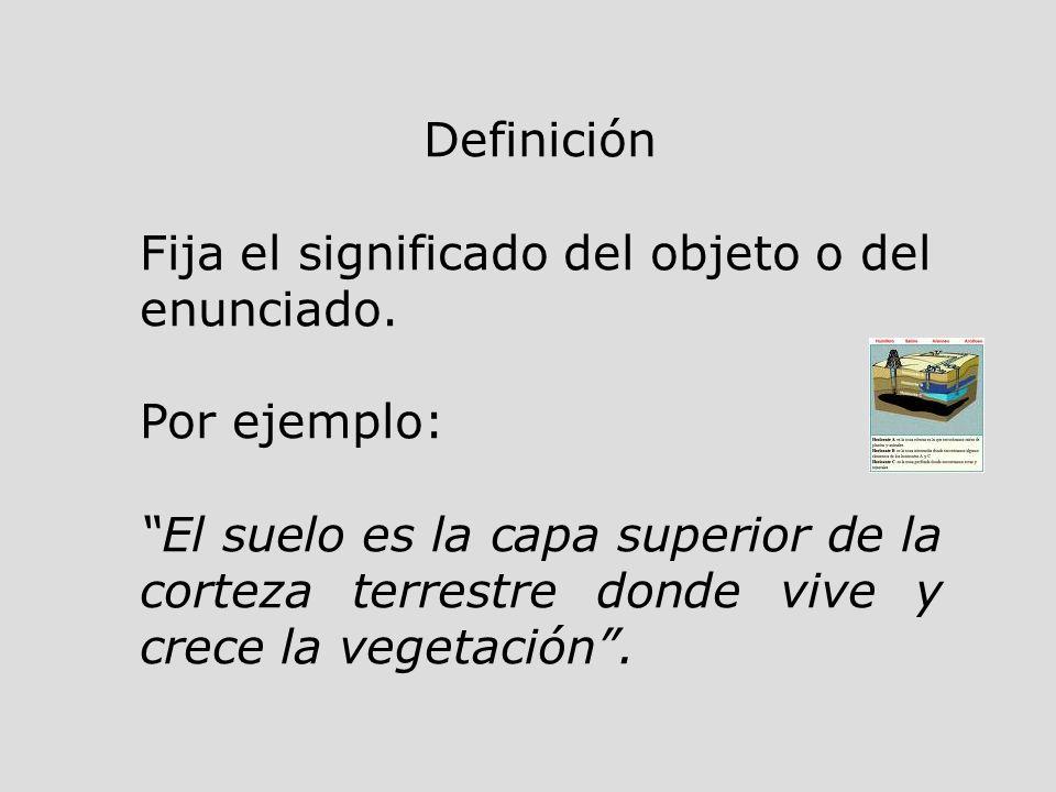Definición Fija el significado del objeto o del enunciado. Por ejemplo: