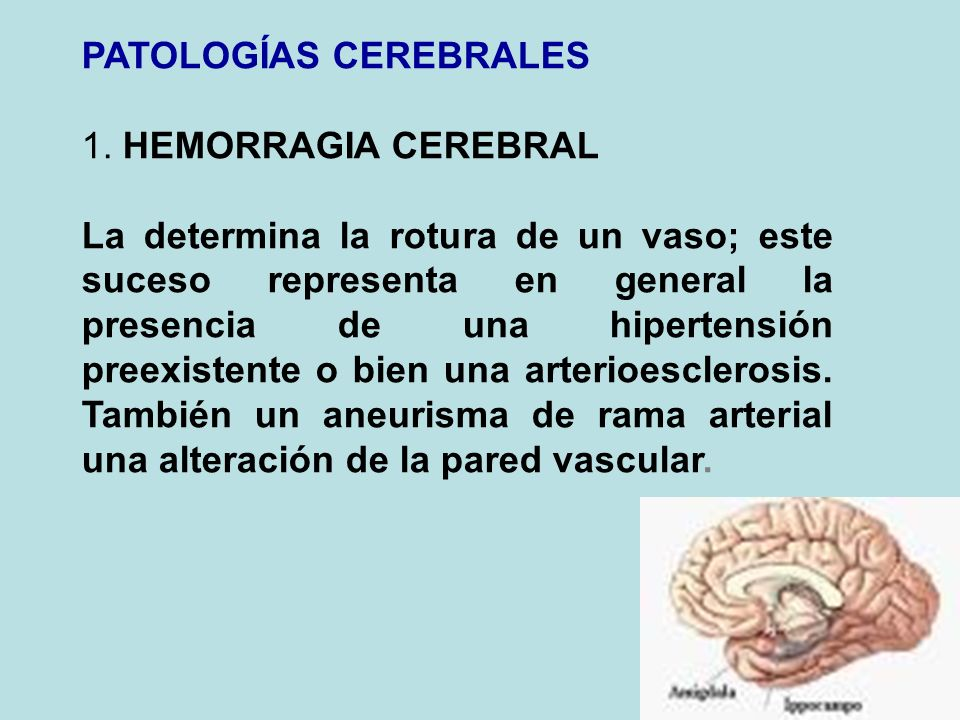 PATOLOGÍAS CEREBRALES