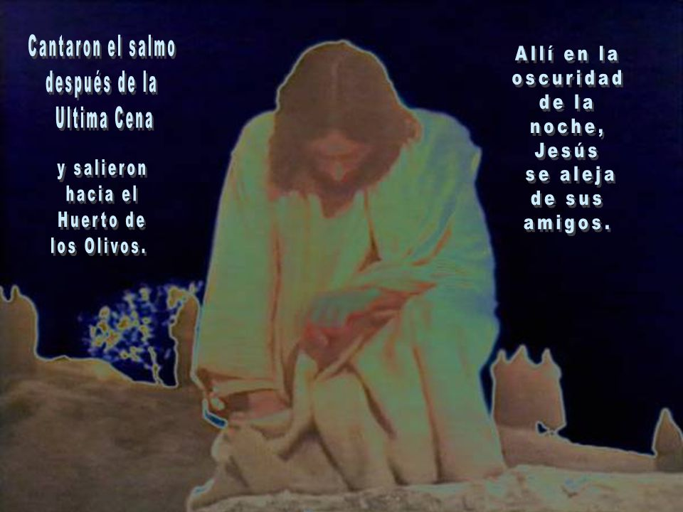 Cantaron el salmo después de la. Ultima Cena. Allí en la. oscuridad. de la. noche, Jesús. se aleja.