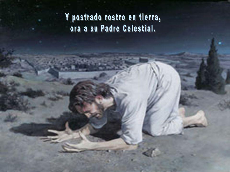 Y postrado rostro en tierra, ora a su Padre Celestial.