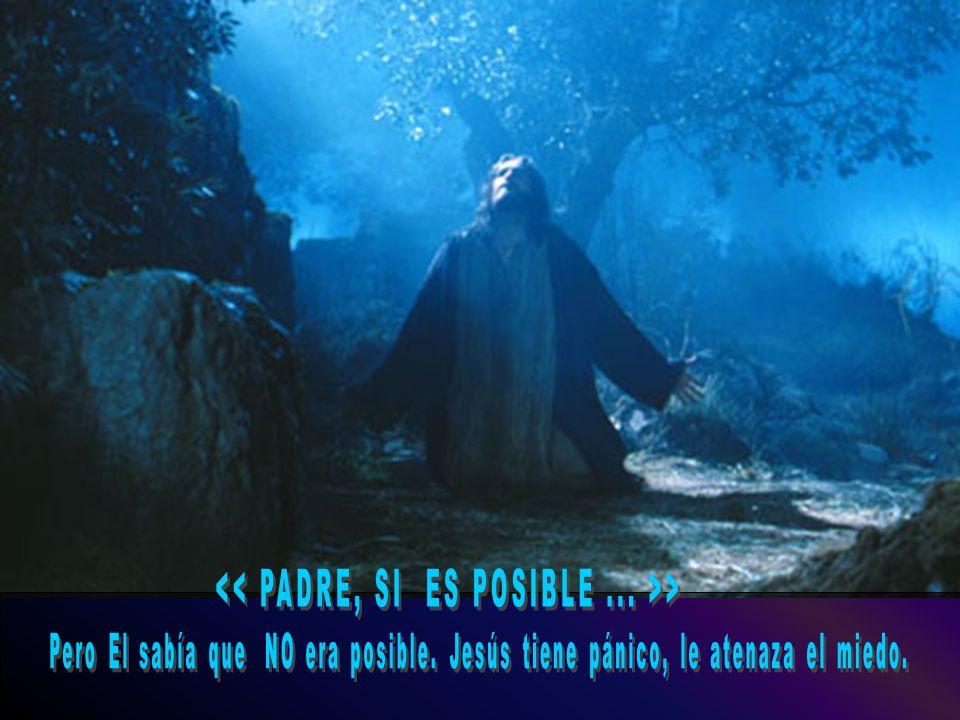 << PADRE, SI ES POSIBLE ... >>