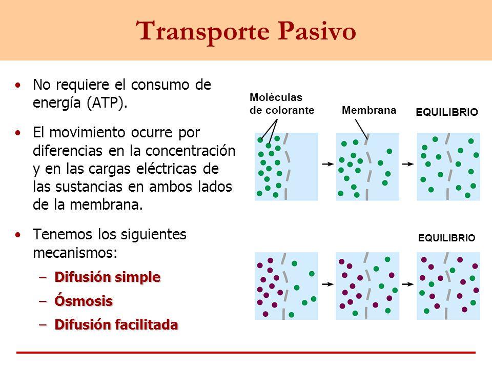 Transporte Pasivo No requiere el consumo de energía (ATP).