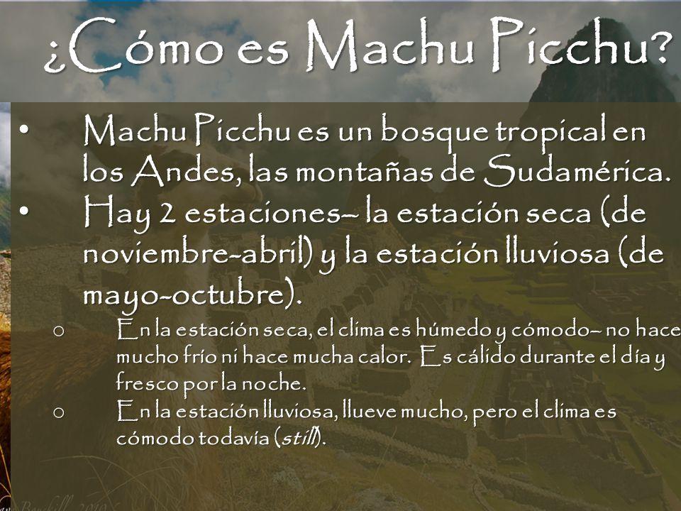¿Cómo es Machu Picchu Machu Picchu es un bosque tropical en los Andes, las montañas de Sudamérica.