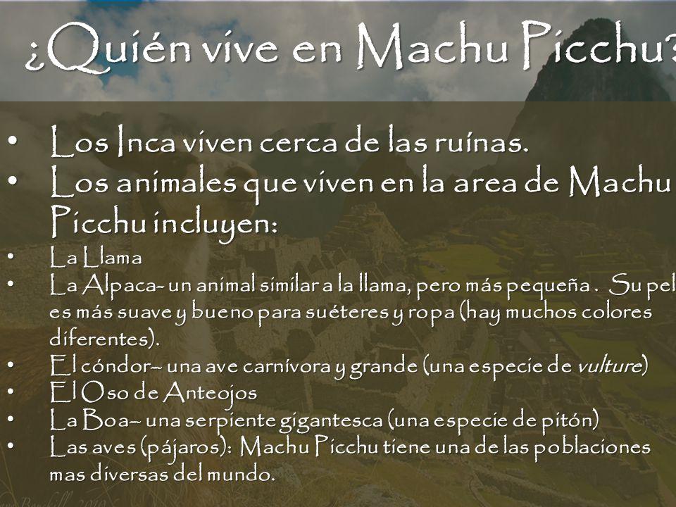 ¿Quién vive en Machu Picchu