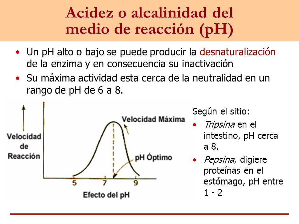 Acidez o alcalinidad del medio de reacción (pH)