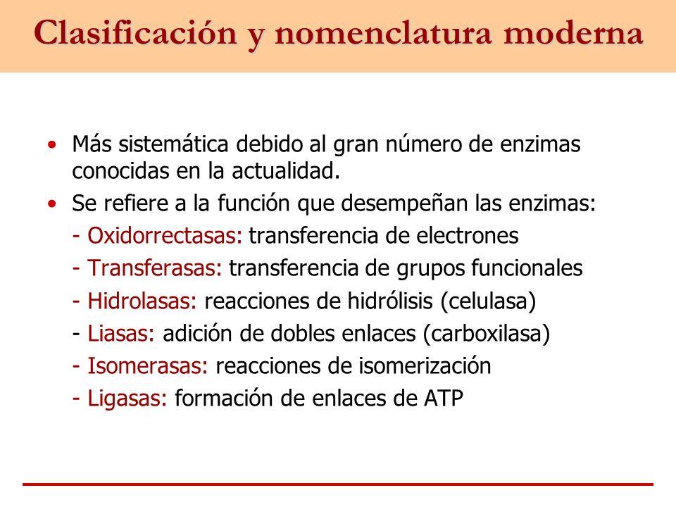 Clasificación y nomenclatura moderna
