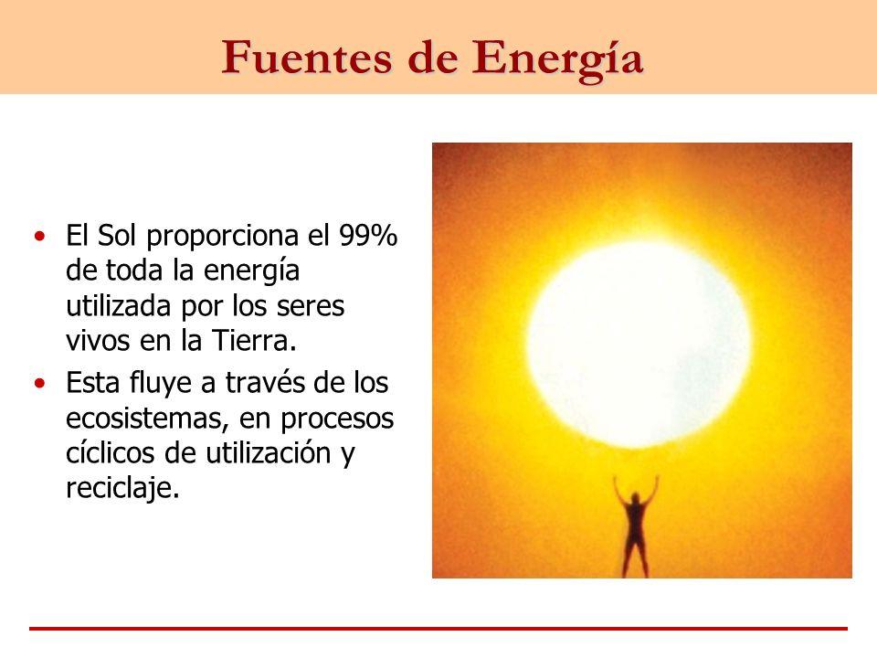 Fuentes de Energía El Sol proporciona el 99% de toda la energía utilizada por los seres vivos en la Tierra.