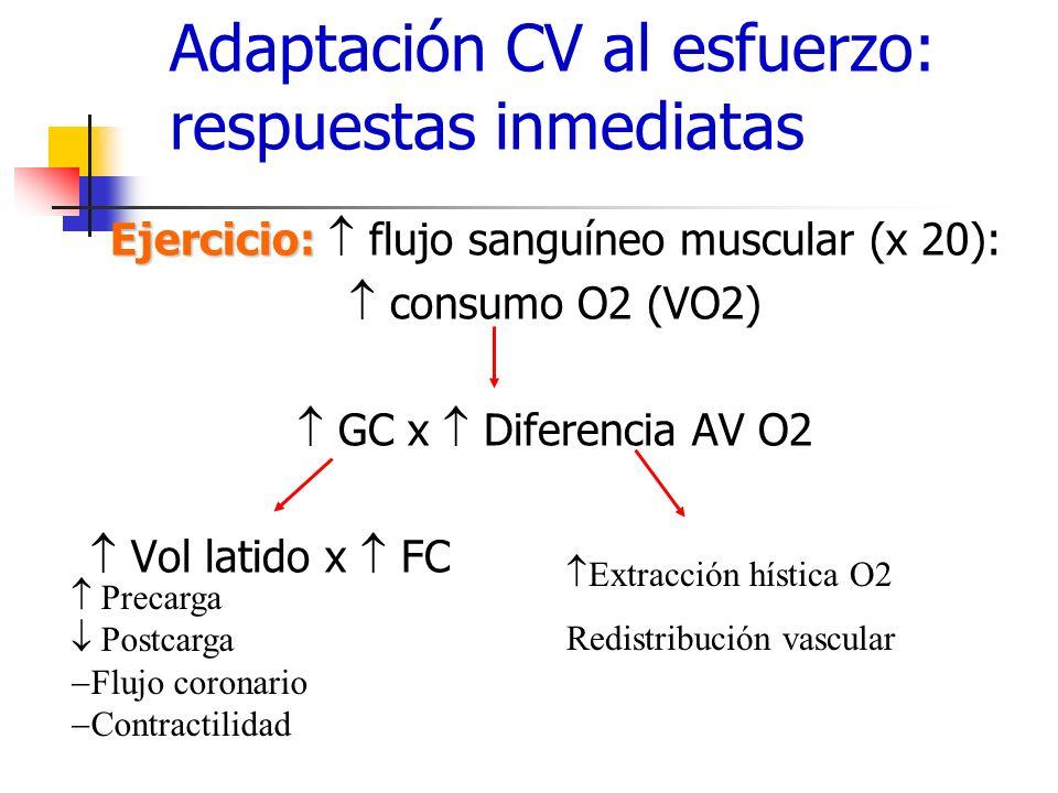 Adaptación CV al esfuerzo: respuestas inmediatas