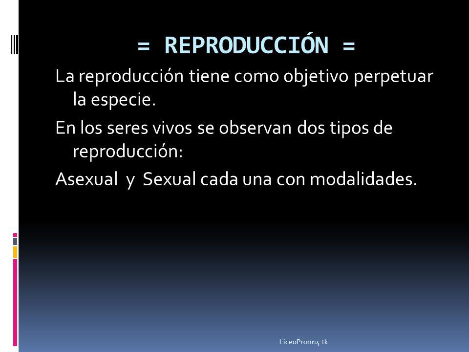 = REPRODUCCIÓN = La reproducción tiene como objetivo perpetuar la especie. En los seres vivos se observan dos tipos de reproducción: