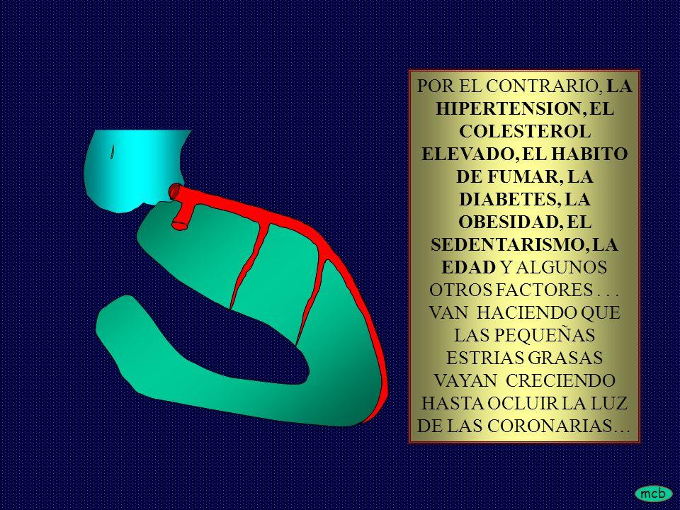 POR EL CONTRARIO, LA HIPERTENSION, EL COLESTEROL ELEVADO, EL HABITO DE FUMAR, LA DIABETES, LA OBESIDAD, EL SEDENTARISMO, LA EDAD Y ALGUNOS OTROS FACTORES .