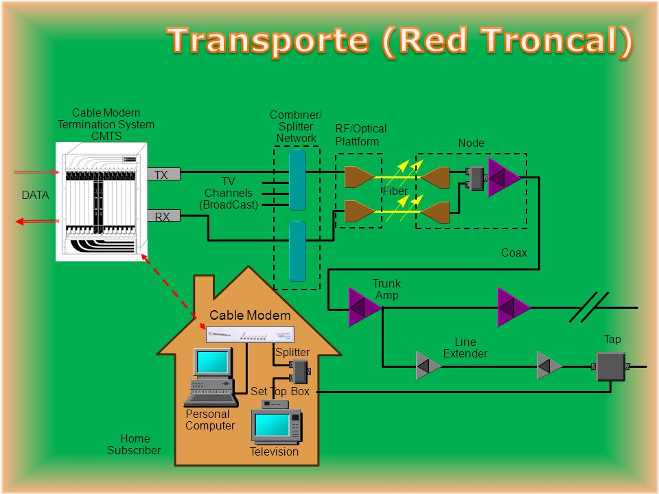 Transporte (Red Troncal)