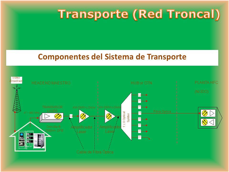 Componentes del Sistema de Transporte