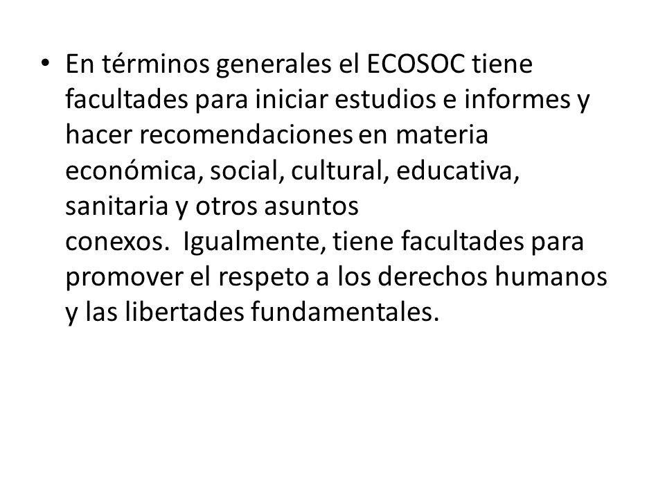 En términos generales el ECOSOC tiene facultades para iniciar estudios e informes y hacer recomendaciones en materia económica, social, cultural, educativa, sanitaria y otros asuntos conexos. Igualmente, tiene facultades para promover el respeto a los derechos humanos y las libertades fundamentales.