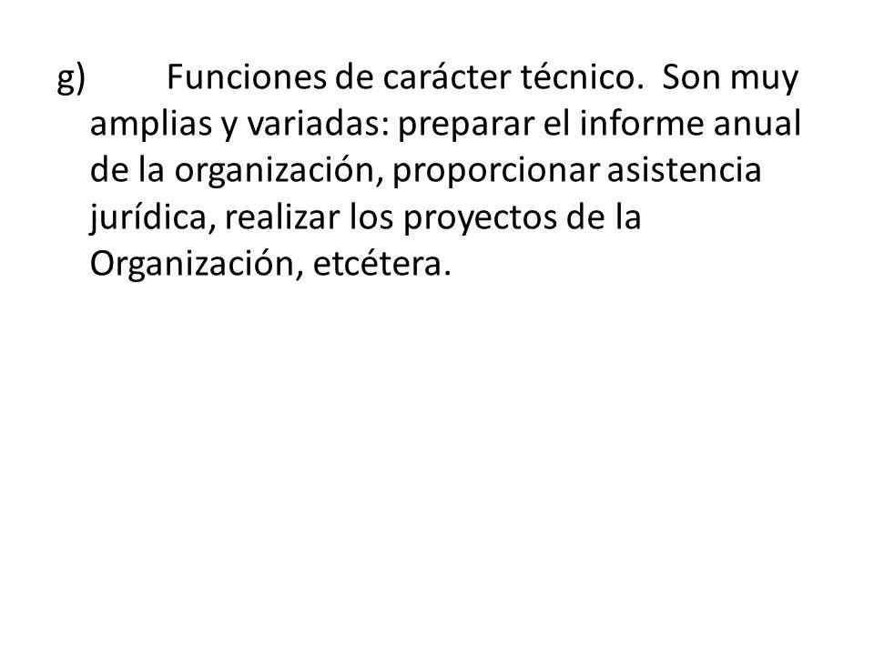 g) Funciones de carácter técnico