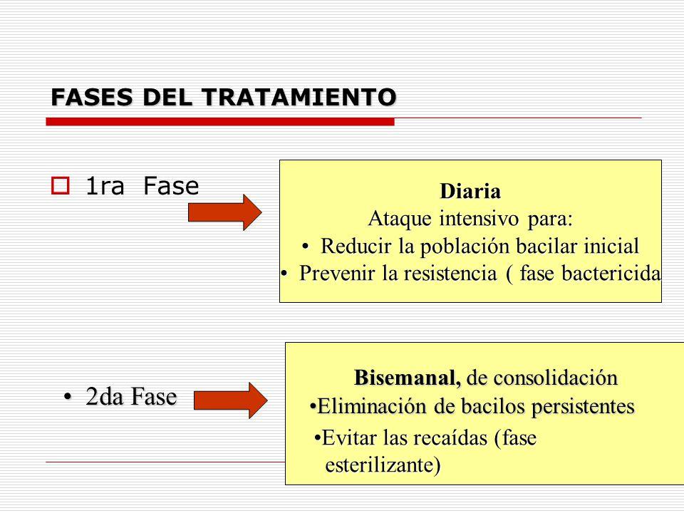 2da Fase 1ra Fase FASES DEL TRATAMIENTO Diaria Ataque intensivo para: